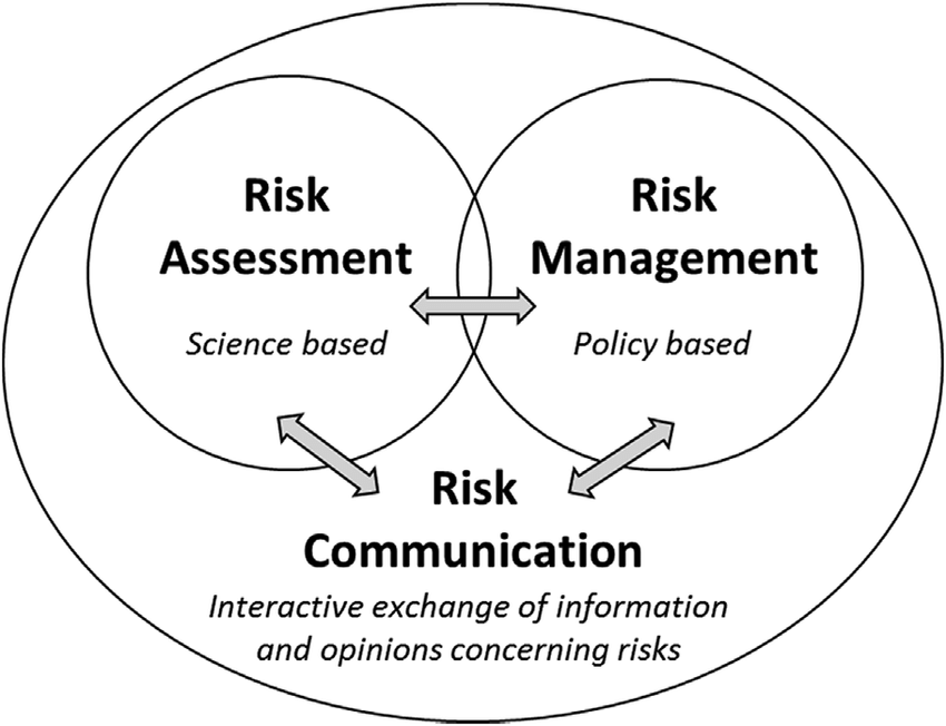 The risk analysis framework with the elements risk