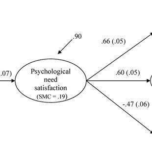 (PDF) Examining Intrinsic versus Extrinsic Exercise Goals