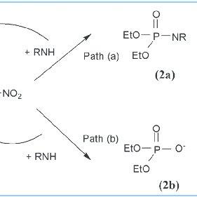 (PDF) Reaction mechanisms in ionic liquids: Kinetics and