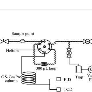 A schematic diagram of the GC analysis system showing
