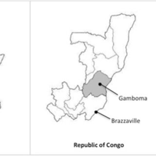 (PDF) Epidemiology of dementia in Central Africa (EPIDEMCA