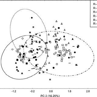 (PDF) Biosystematic studies of Elymus repens (L.) Gould