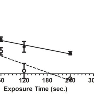P. aeruginosa cell suspensions were spread over MHA plates