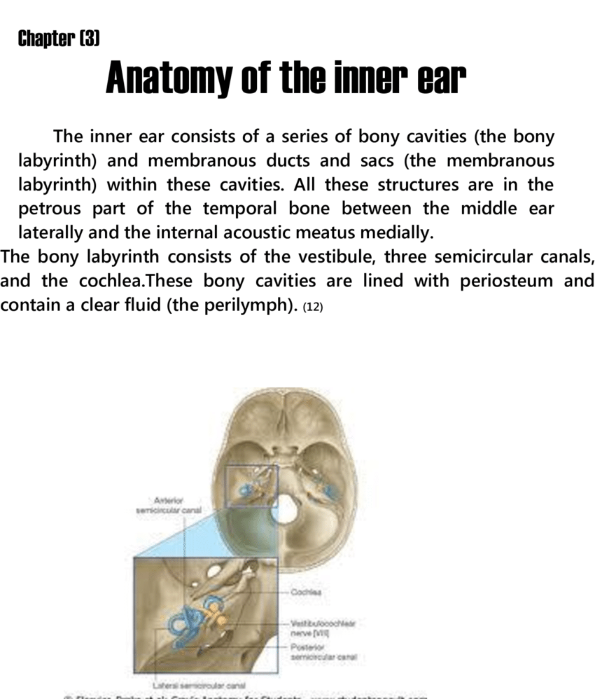 hight resolution of site of inner ear in petrous bone
