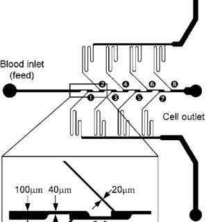 (PDF) Validation of a blood plasma separation system by