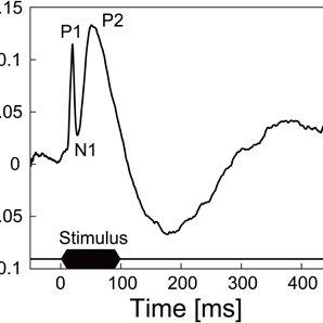 Spontaneous activities recorded from rat cerebellar cortex