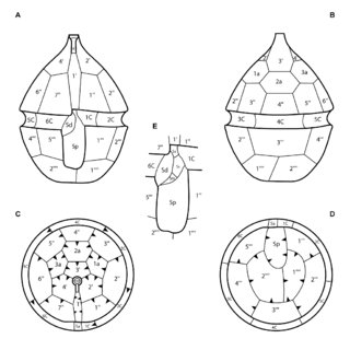 (PDF) (2383) Proposal to reject the name Goniodomataceae