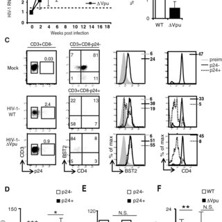 (PDF) Efficient BST2 antagonism by Vpu is critical for