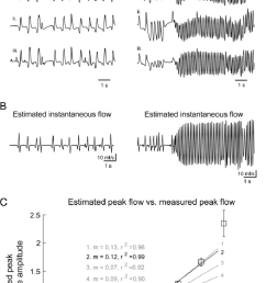 intranasal airflow measured via thermocouple during sniff playback a comparison of thermocouple signals [ 767 x 1373 Pixel ]