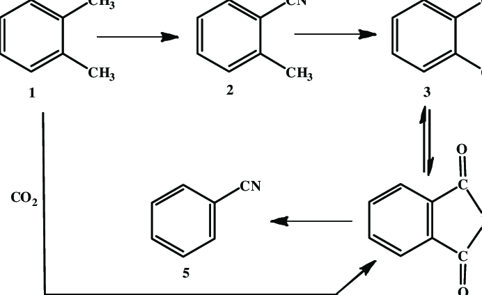 Ammoxidation of o-xylene on V-Sb-Bi-Cr/γ-Al2O3-oxide