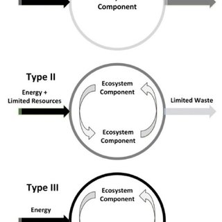 Introduction of Type II/2 Model of Resource Flows