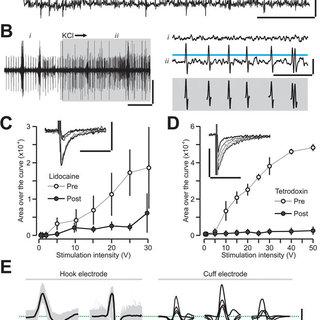 (PDF) Cytokine-specific Neurograms in the Sensory Vagus Nerve