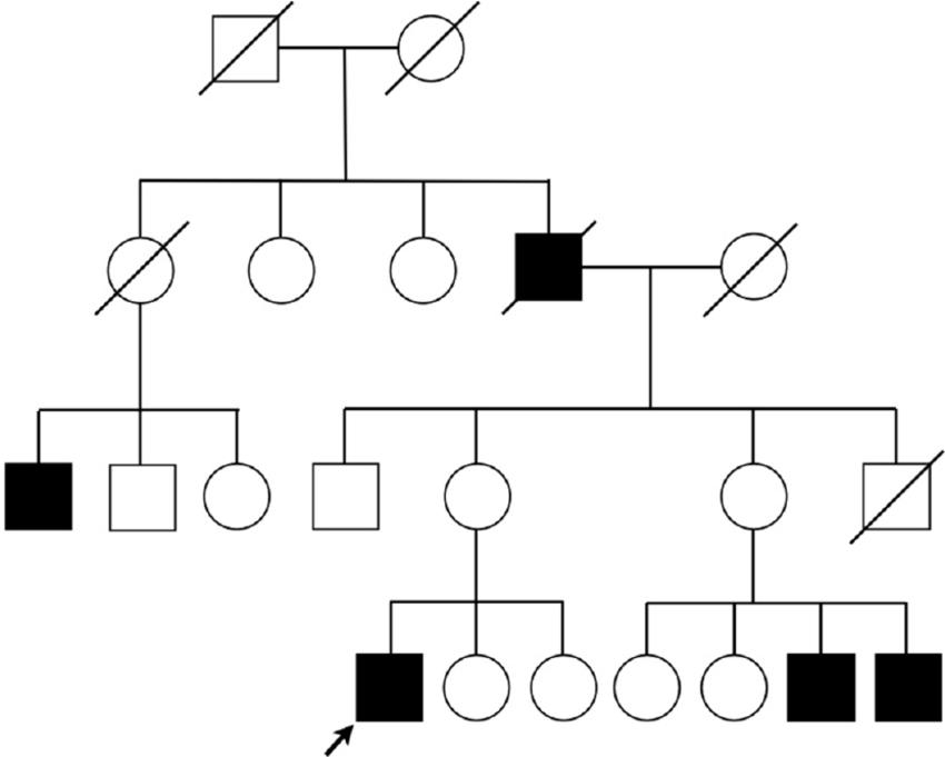 Fresh Circle Family Tree #QU38
