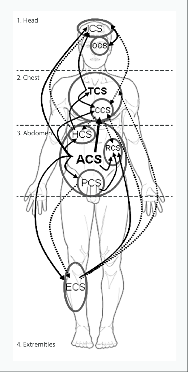 medium resolution of interactions between the four main body compartments head chest download scientific diagram