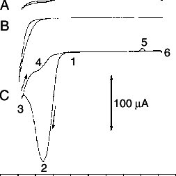 12. Cyclic voltammograms at 50 mV s −1 on