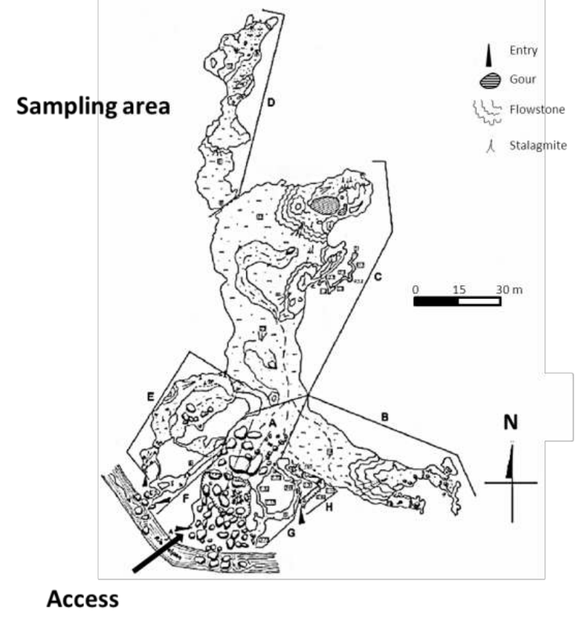 An overview of the Los Riscos Cave, indicating sampling