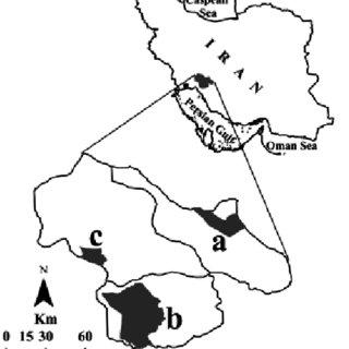 (PDF) Data on habitat and breeding biology of the Barbary