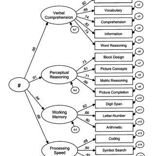 The Cattell-Horn-Carroll (CHC) model of intelligence. The