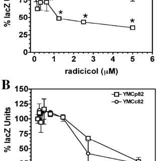 A low concentration of radicicol does not increase Hsp90