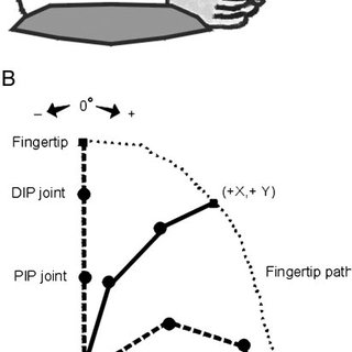 (PDF) Differential Impairment of Individuated Finger