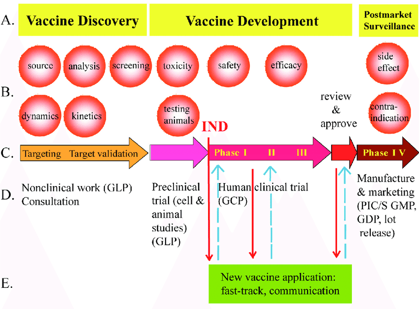 diagram of how vaccines work the cause and effect frame vaccine research development download scientific