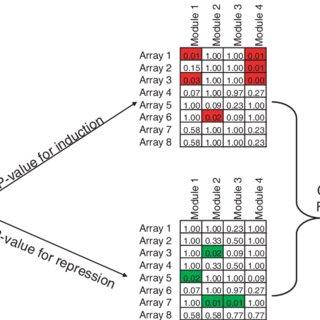 (PDF) Module-Based Outcome Prediction Using Breast Cancer
