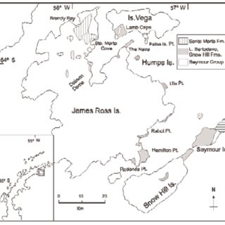 (PDF) Nautilids from the Upper Cretaceous of the James