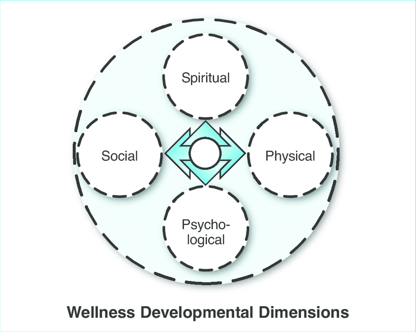 The Framework for Exploring Adolescent Wellness was used