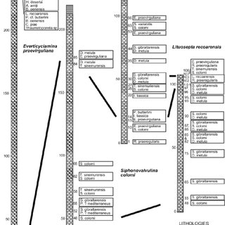 a. Logged stratigraphic sections with foraminiferal