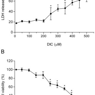 RAW 264.7 macrophages were pretreated with DIC 200 µM for