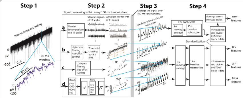 Processing of raw signal into different neural features
