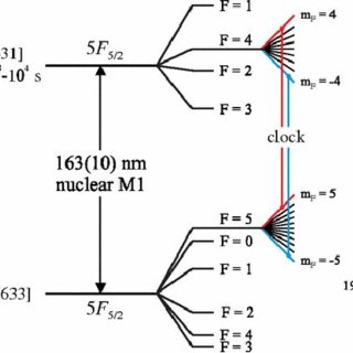 (PDF) A Network of Nuclear Atomic Clocks for Precision