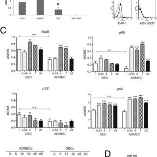 (PDF) RelB activation in anti-inflammatory decidual