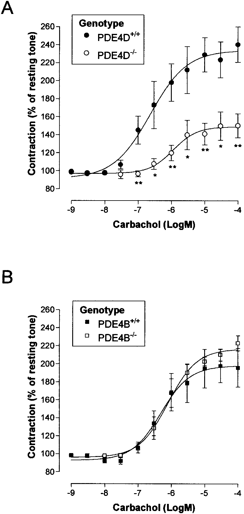 hight resolution of cumulative contractile response to carbachol in isolated trachea from pde4d and pde4b wt and null mice