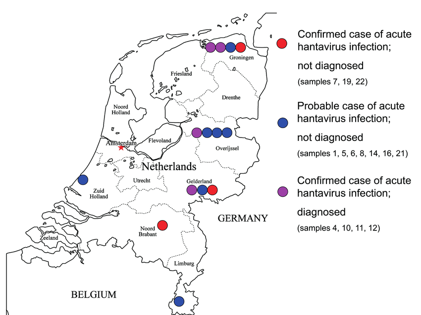 Distribution of probable and confirmed cases of hantavirus ...