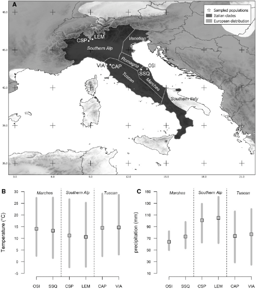 hight resolution of  a distribution map of italian clades of the common wall lizard the download scientific diagram