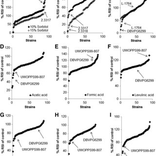 (PDF) Phenotypic characterisation of Saccharomyces spp