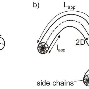 Schematic drawing of a worm-like chain with cylindrical