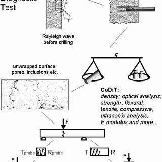 Schematic diagram of the CoDiT procedure used for testing