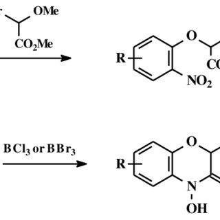 (PDF) Benzoxazinones in plants: Occurrence, synthetic