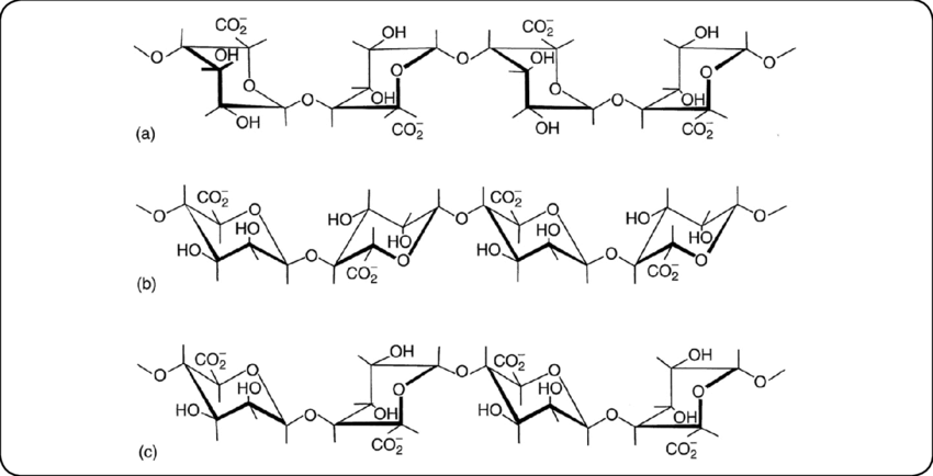 Chemical structures of uronic acid blocks involved in