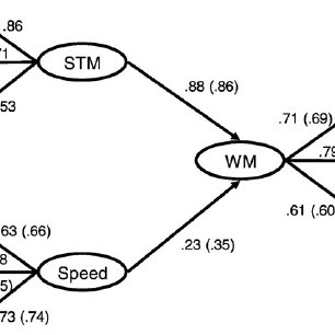 (PDF) Working memory and intelligence are highly related