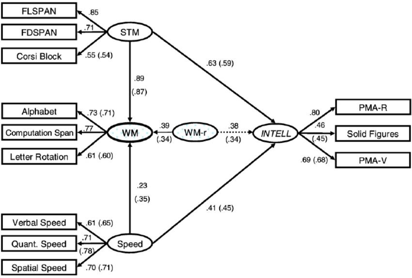 General model testing the relationship of short-term