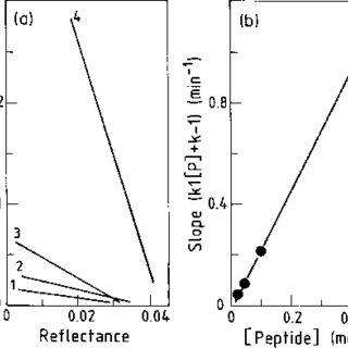 Polylysine binding to RRREEETEEE peptide immobilized on