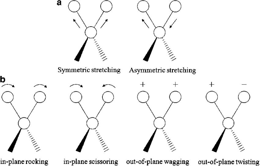 Types of molecular vibrations: (a) Stretching vibrations