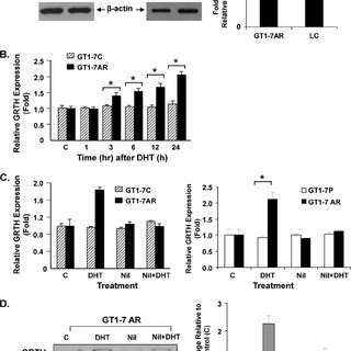 (PDF) Androgen-Induced Activation of Gonadotropin