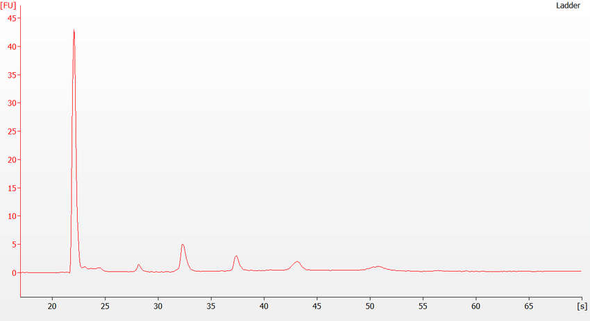 My RNA pico ladder does not look right on the Bioanalyzer