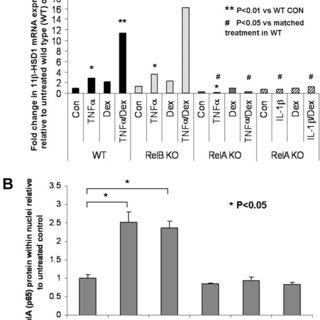 Molecular analysis of the role of p38 MAPK signaling in