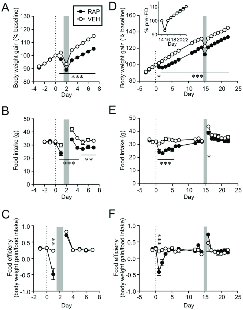 hight resolution of rapamycin treated animals defend lower body weight in response to acute download scientific diagram