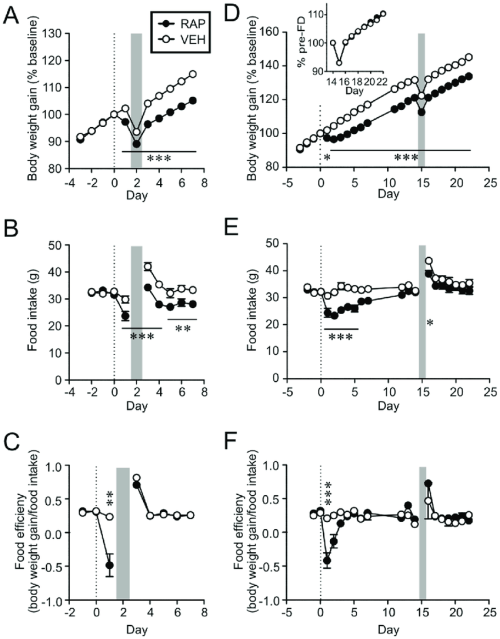 small resolution of rapamycin treated animals defend lower body weight in response to acute download scientific diagram